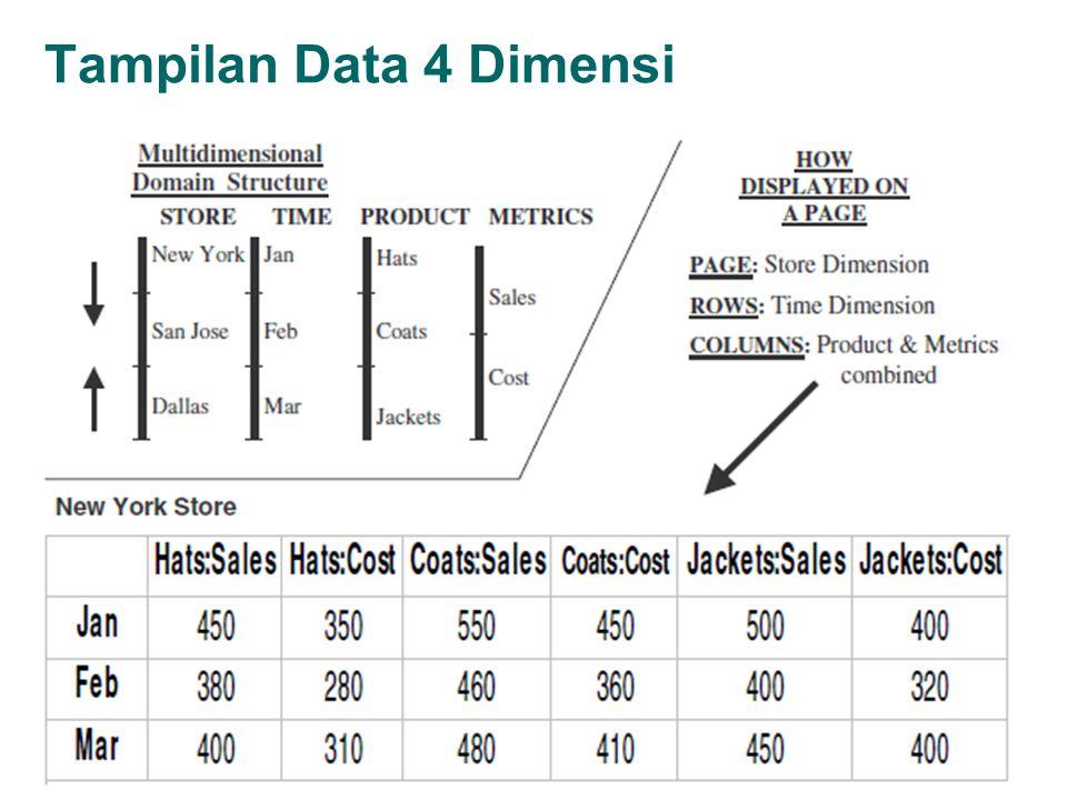 Tampilan Data 4 Dimensi