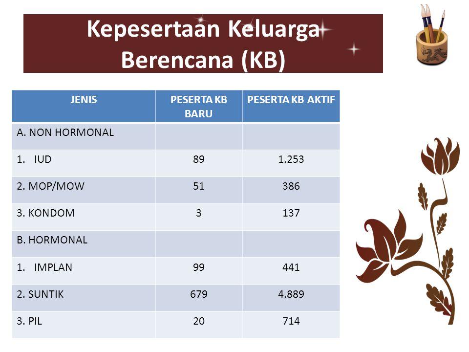 Kepesertaan Keluarga Berencana (KB)