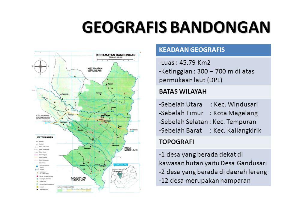 GEOGRAFIS BANDONGAN KEADAAN GEOGRAFIS Luas : 45.79 Km2
