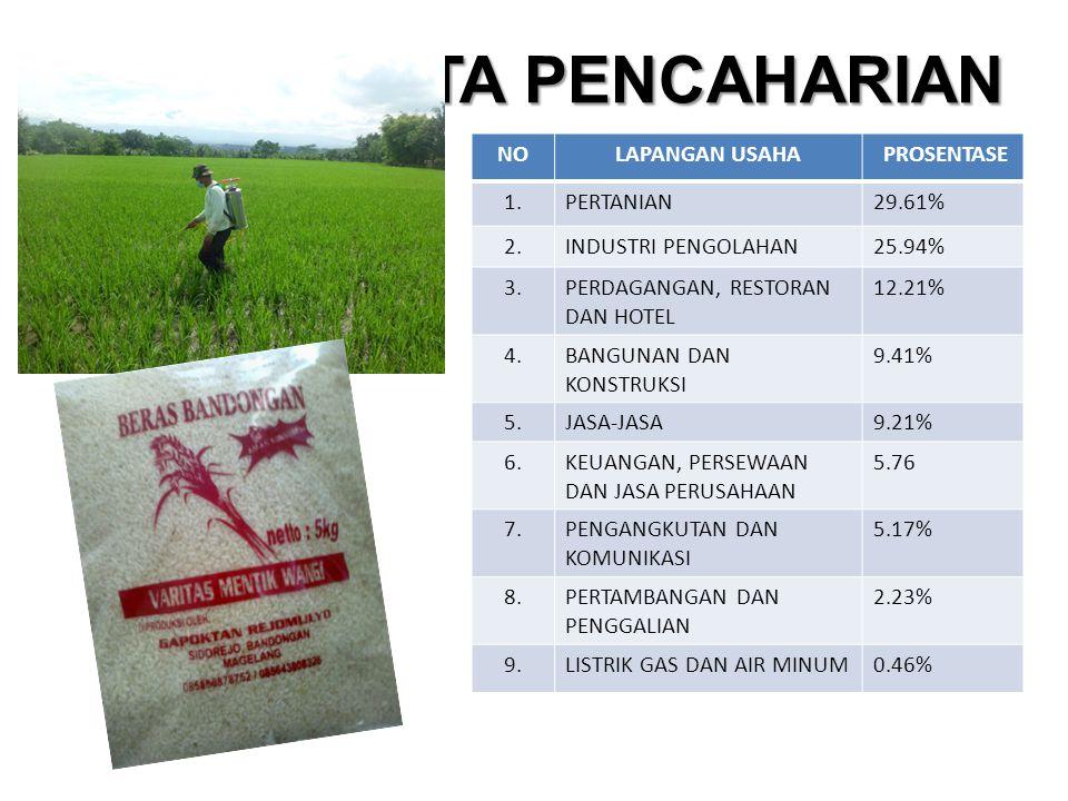 MATA PENCAHARIAN NO LAPANGAN USAHA PROSENTASE 1. PERTANIAN 29.61% 2.