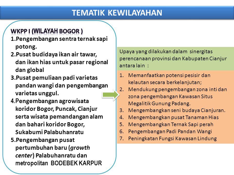 TEMATIK KEWILAYAHAN WKPP I (wilayah BOGOR )