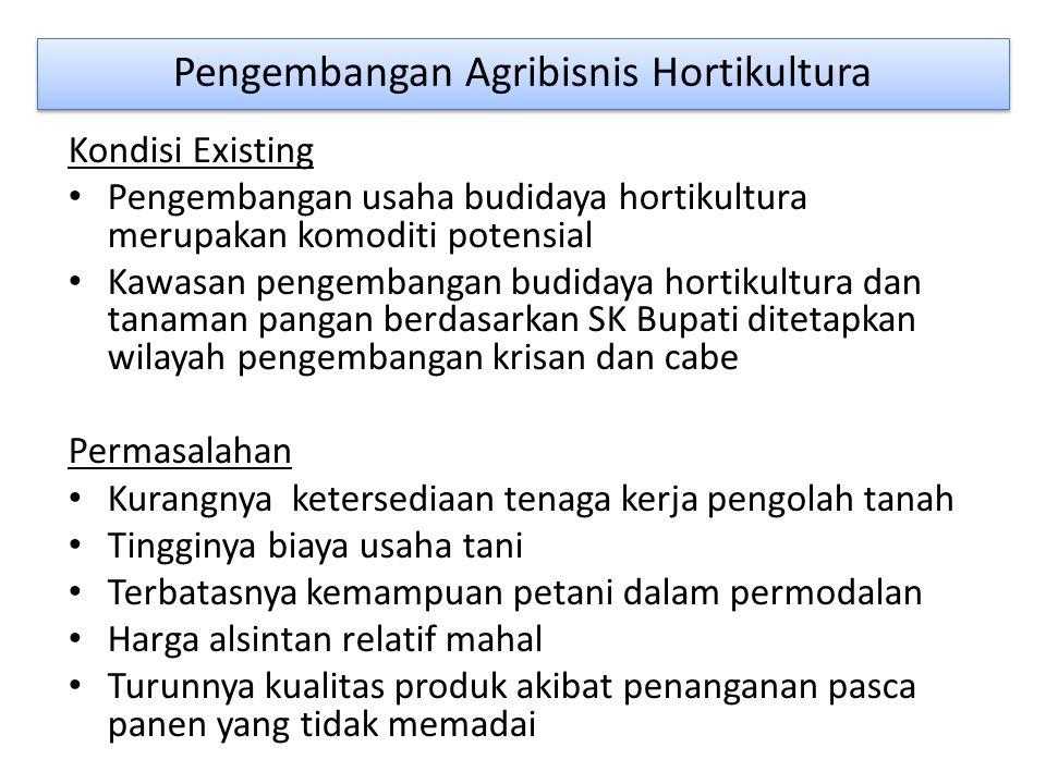 Pengembangan Agribisnis Hortikultura