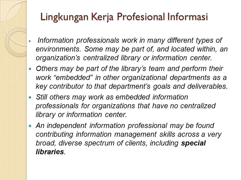Lingkungan Kerja Profesional Informasi