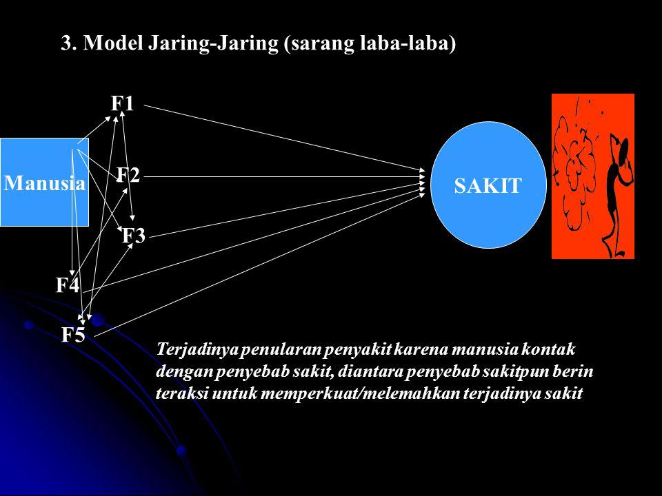 3. Model Jaring-Jaring (sarang laba-laba)