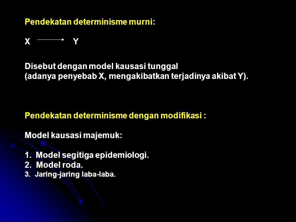 Pendekatan determinisme murni: X Y