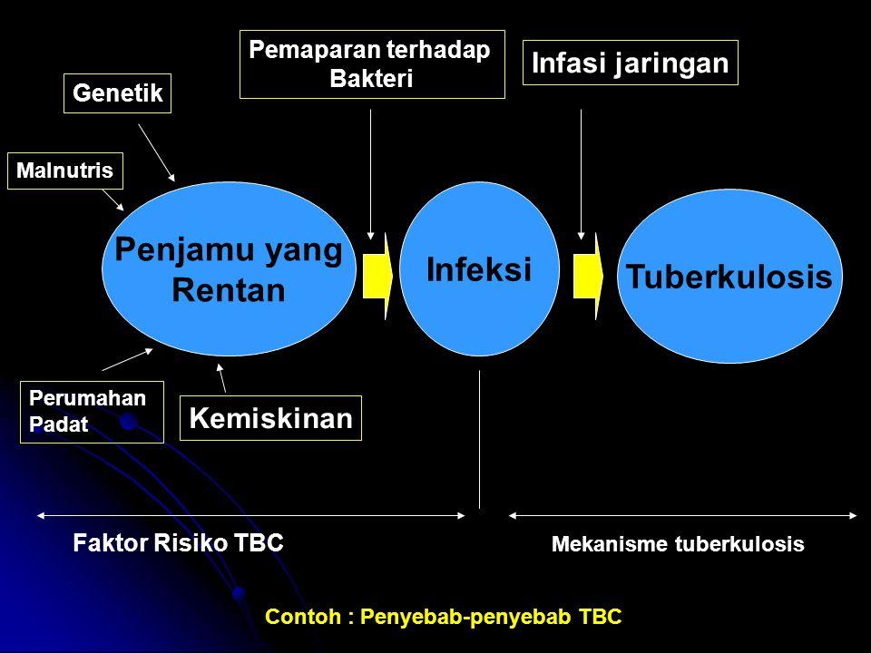 Penjamu yang Rentan Infeksi Tuberkulosis