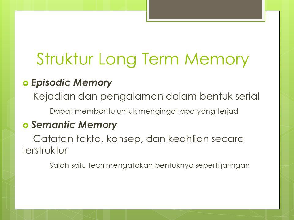 Struktur Long Term Memory