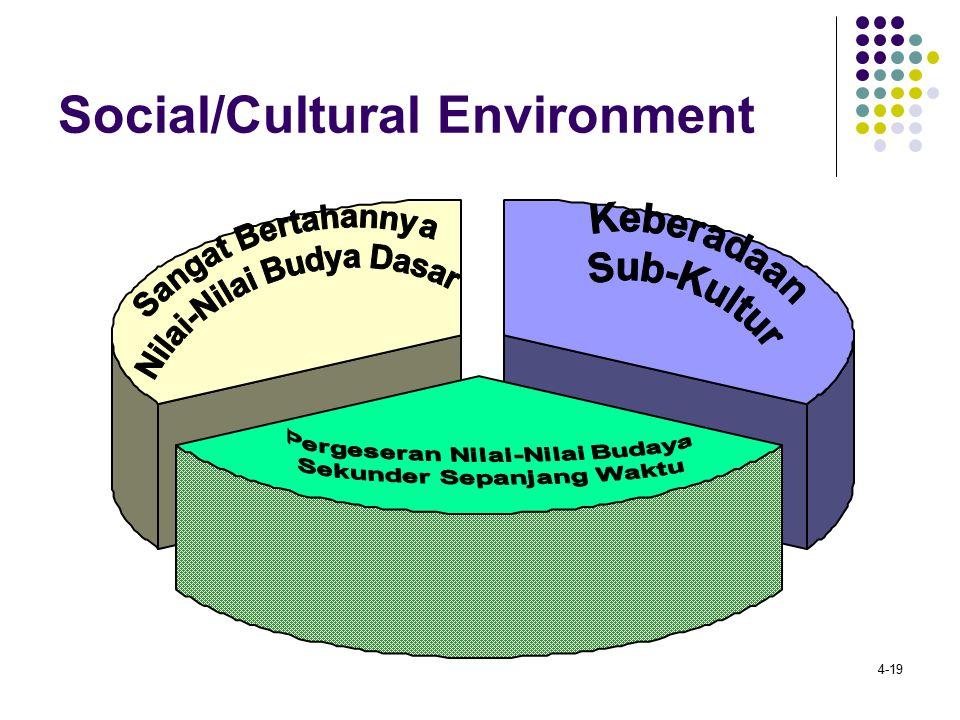 Social/Cultural Environment