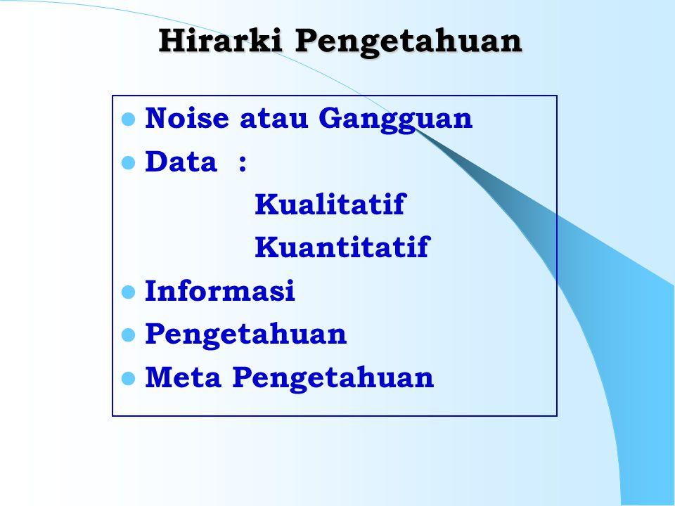 Hirarki Pengetahuan Noise atau Gangguan Data : Kualitatif Kuantitatif