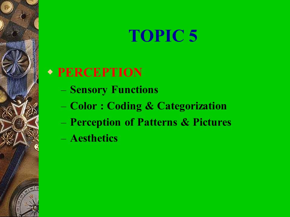 TOPIC 5 PERCEPTION Sensory Functions Color : Coding & Categorization