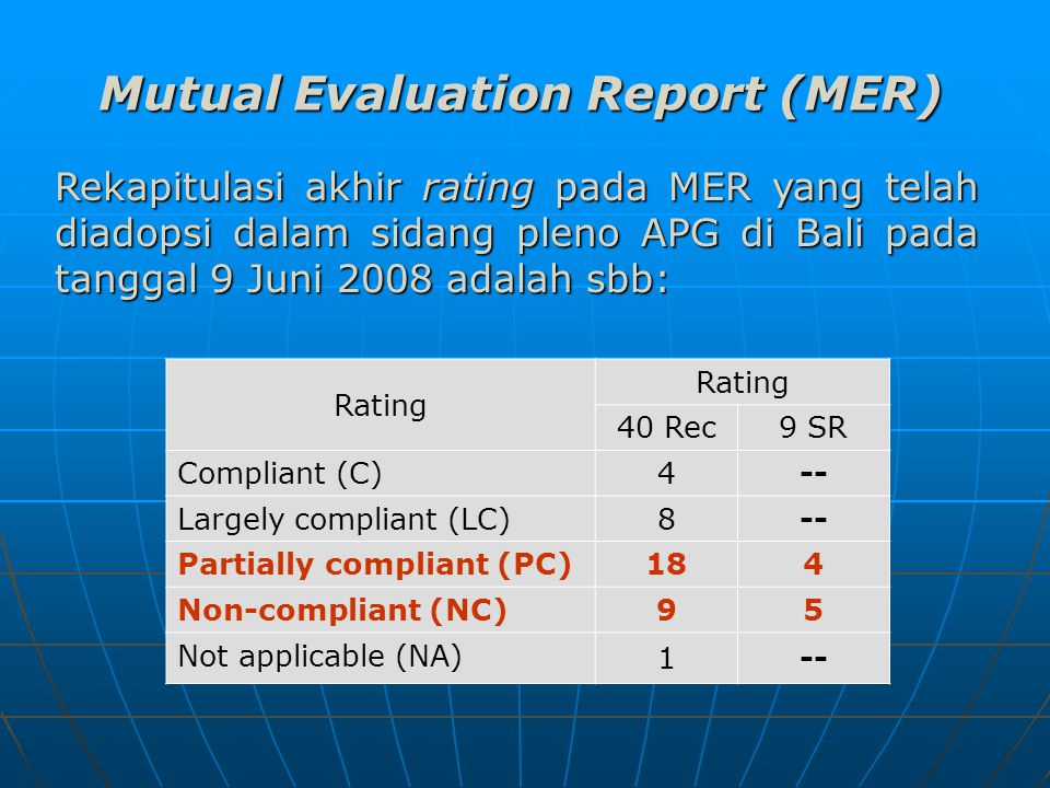 Mutual Evaluation Report (MER)