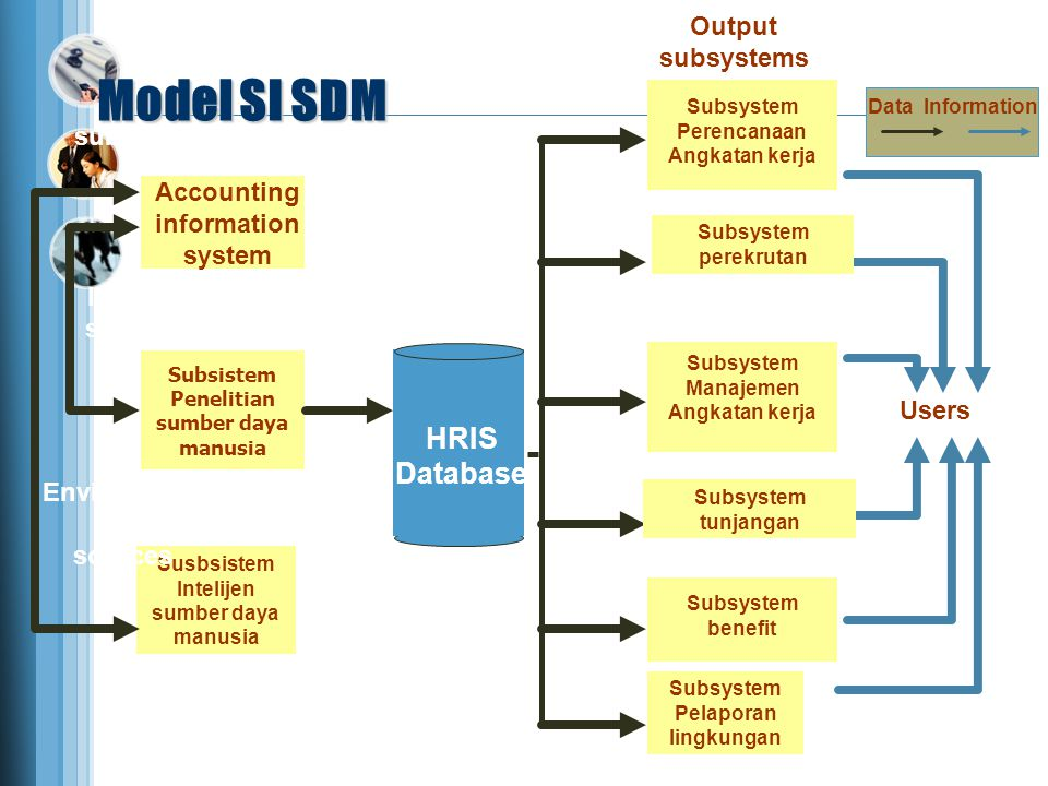 Model SI SDM HRIS Database Output subsystems Input subsystems