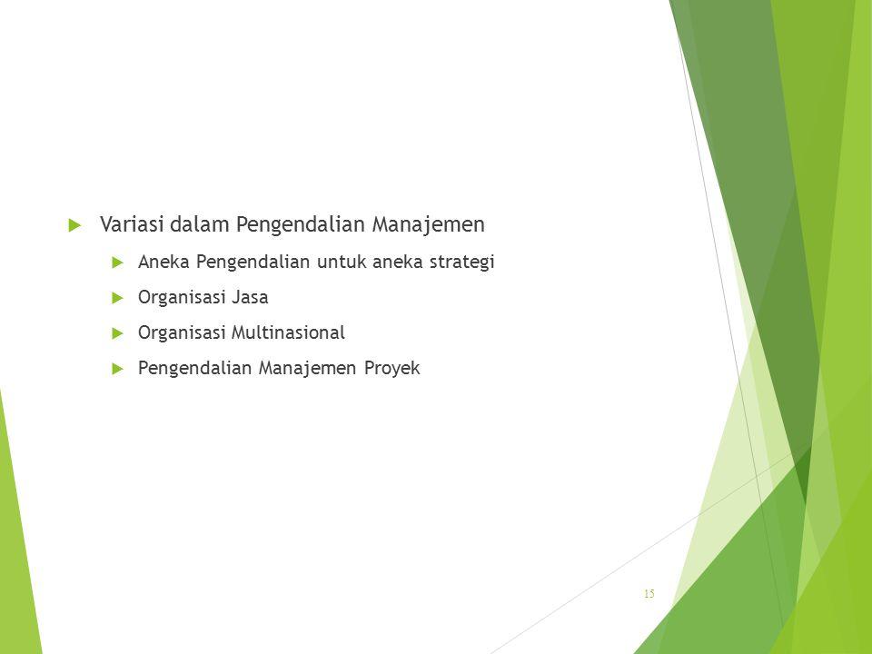 Variasi dalam Pengendalian Manajemen