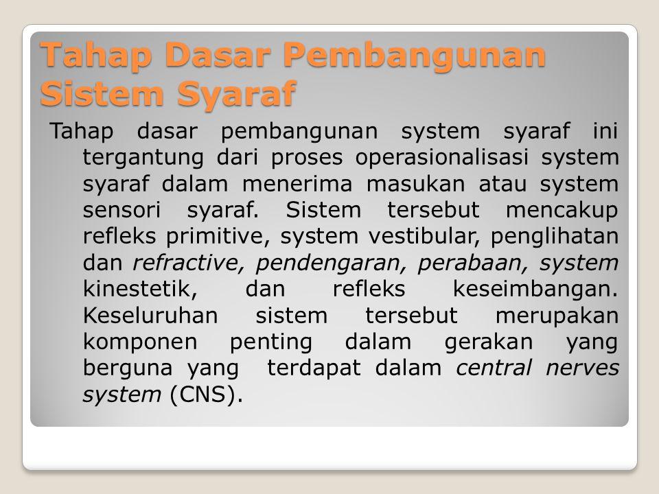 Tahap Dasar Pembangunan Sistem Syaraf