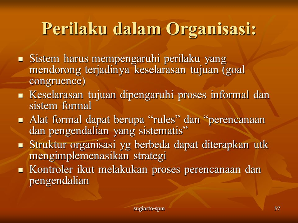 Perilaku dalam Organisasi: