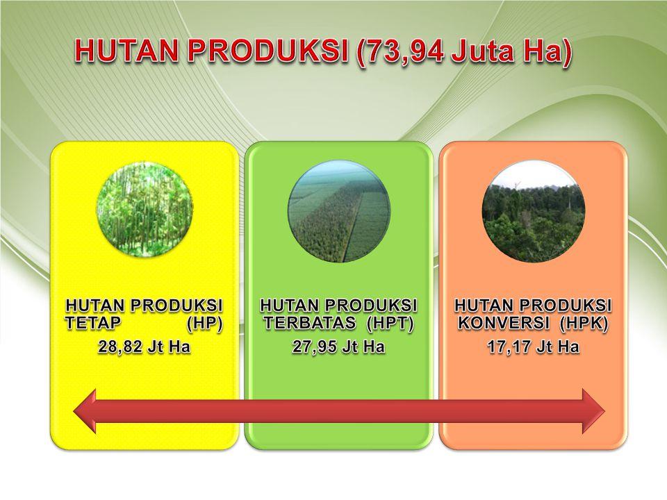 HUTAN PRODUKSI (73,94 Juta Ha)