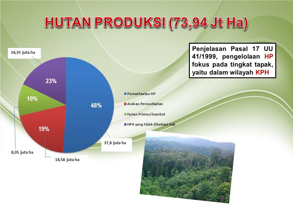 HUTAN PRODUKSI (73,94 Jt Ha) 37,8 juta ha. 14,35 juta ha. 14,58 juta ha. 8,05 juta ha.