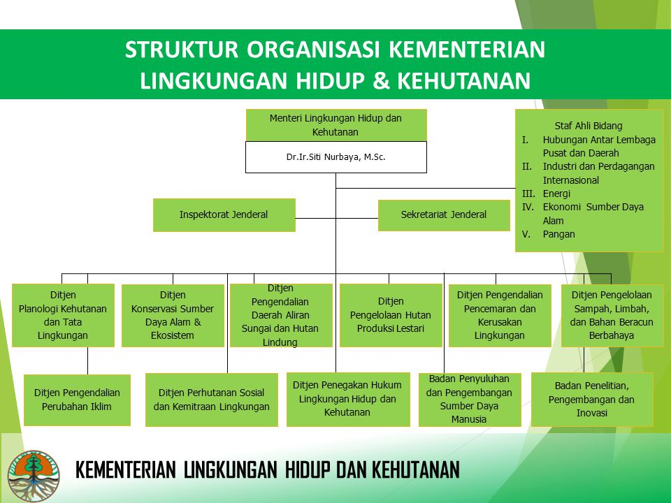 STRUKTUR ORGANISASI KEMENTERIAN LINGKUNGAN HIDUP & KEHUTANAN