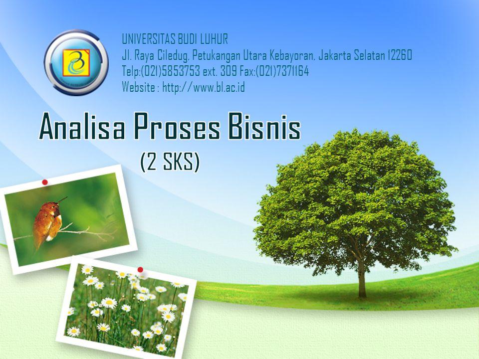 Analisa Proses Bisnis (2 SKS)