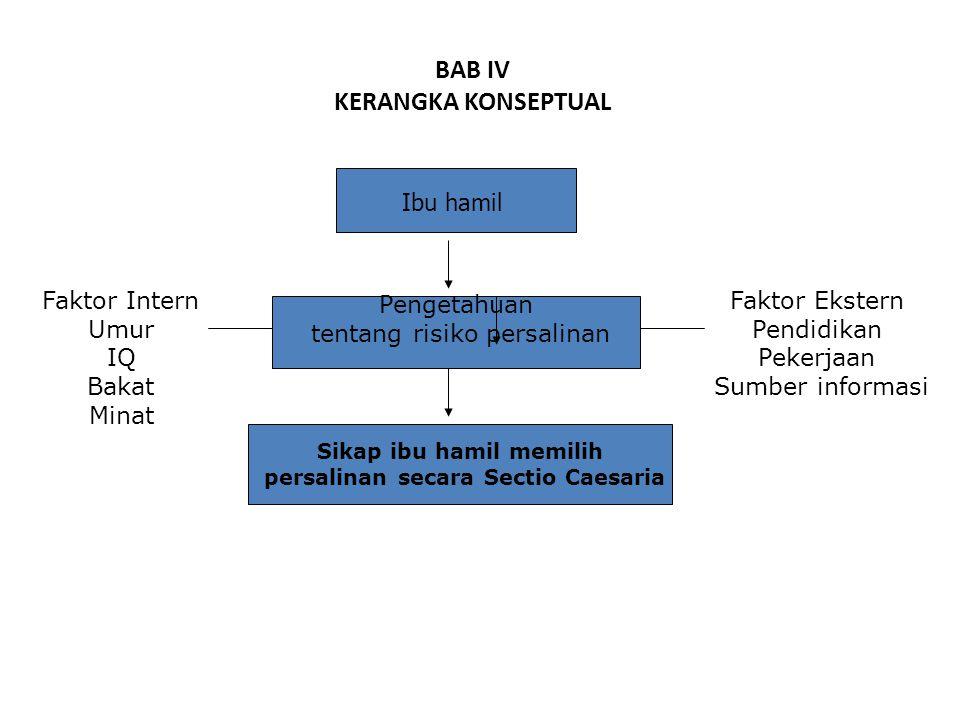 BAB IV KERANGKA KONSEPTUAL