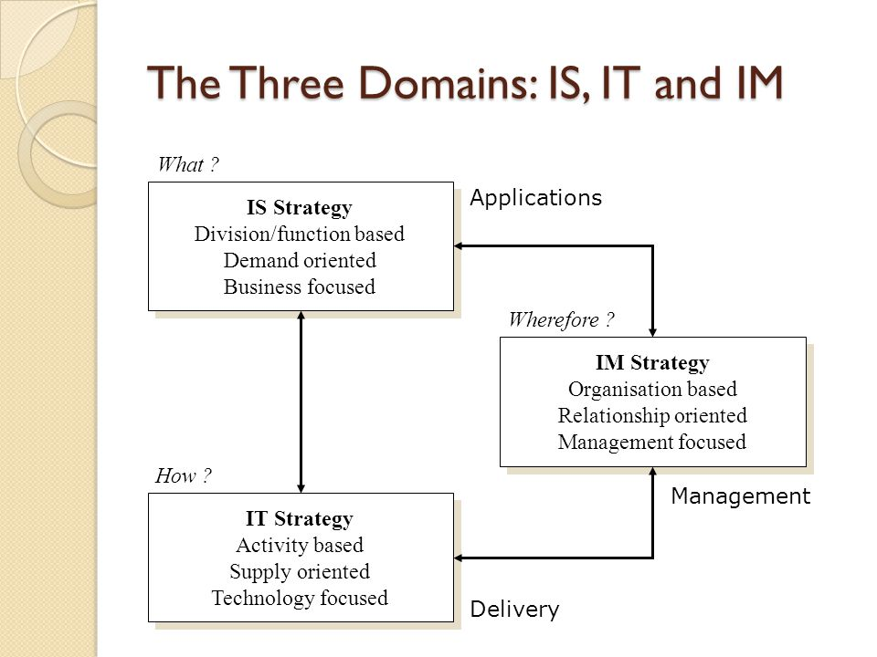 The Three Domains: IS, IT and IM