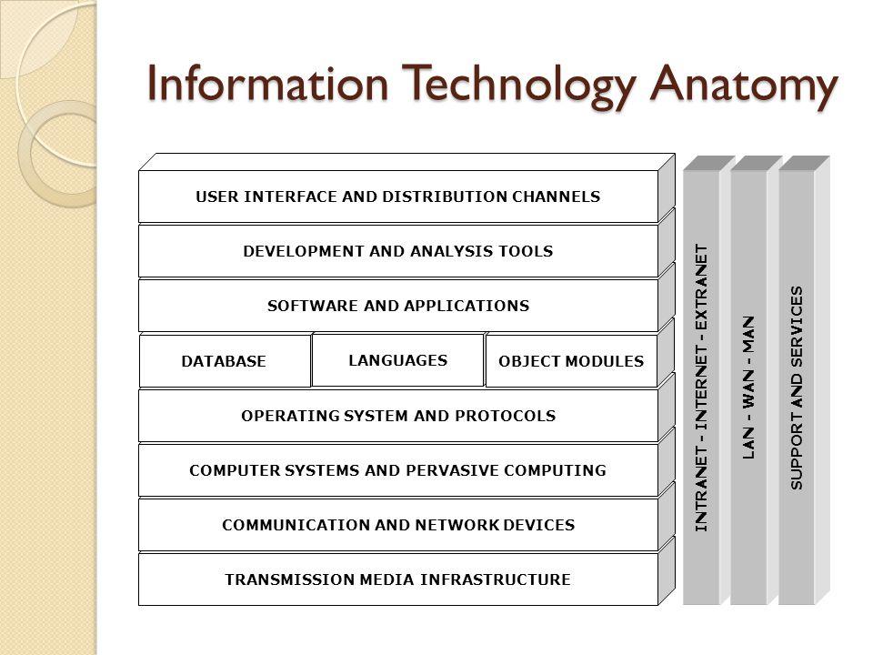 Information Technology Anatomy