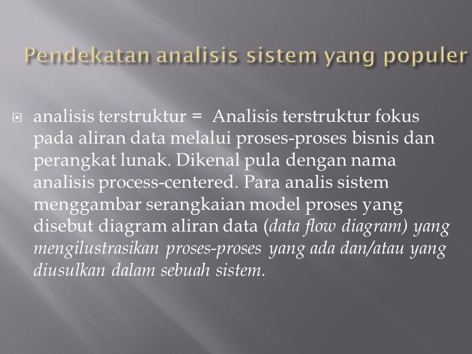 Pendekatan analisis sistem yang populer