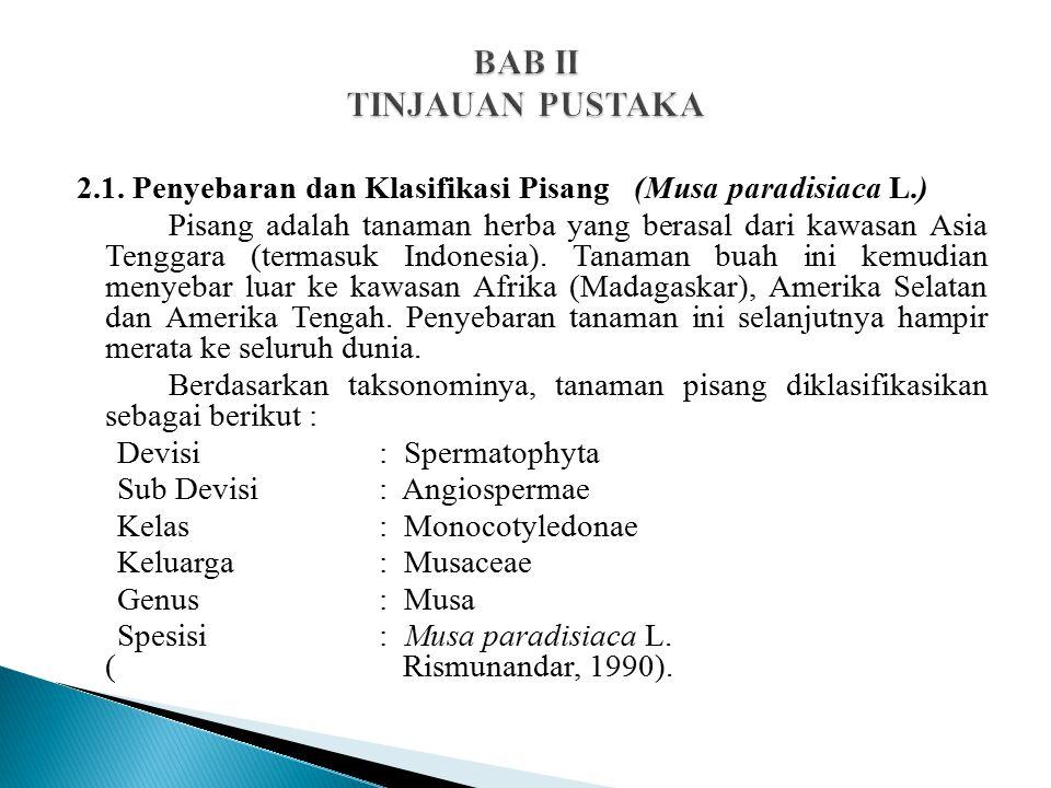 BAB II TINJAUAN PUSTAKA