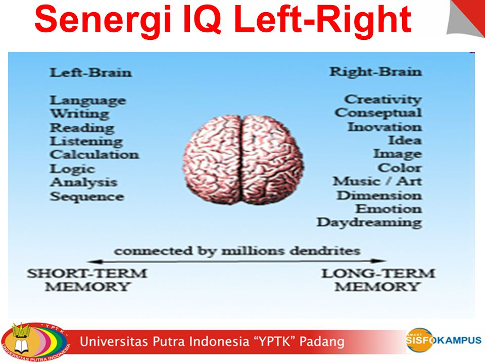 4/8/2017 Senergi IQ Left-Right David Horton (CiTR)