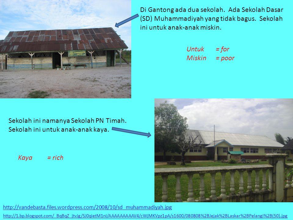 Di Gantong ada dua sekolah