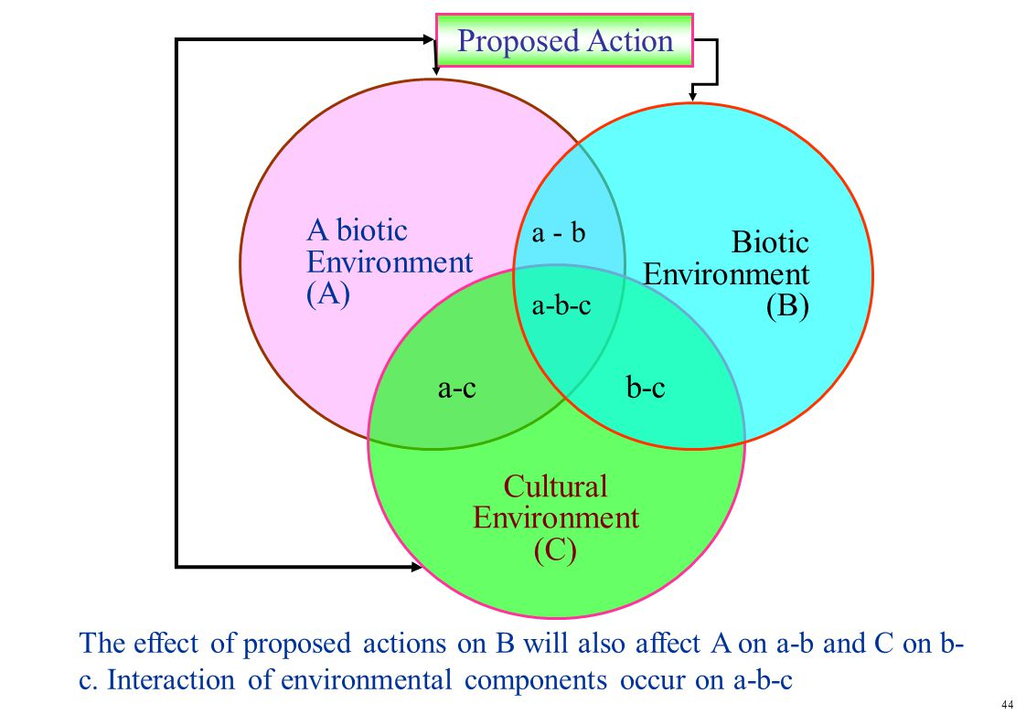 Proposed Action A biotic Environment (A) Biotic Environment (B)