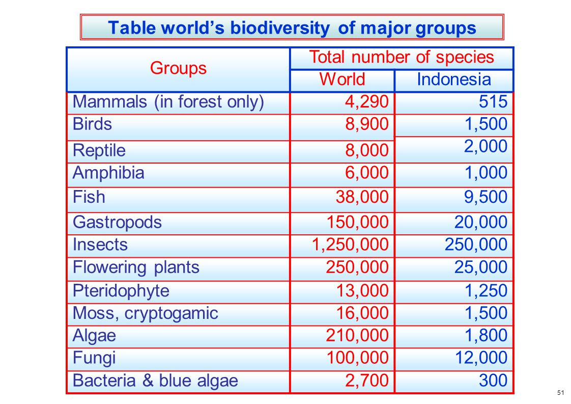 Table world's biodiversity of major groups