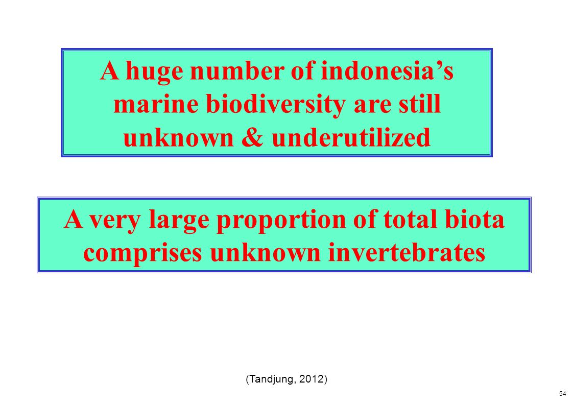 A very large proportion of total biota comprises unknown invertebrates