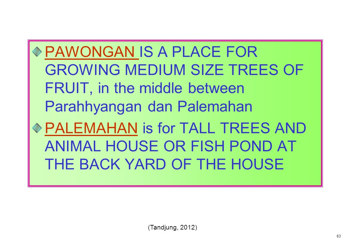 PAWONGAN IS A PLACE FOR GROWING MEDIUM SIZE TREES OF FRUIT, in the middle between Parahhyangan dan Palemahan