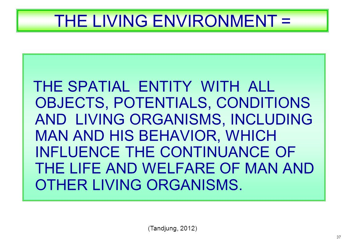 THE LIVING ENVIRONMENT =