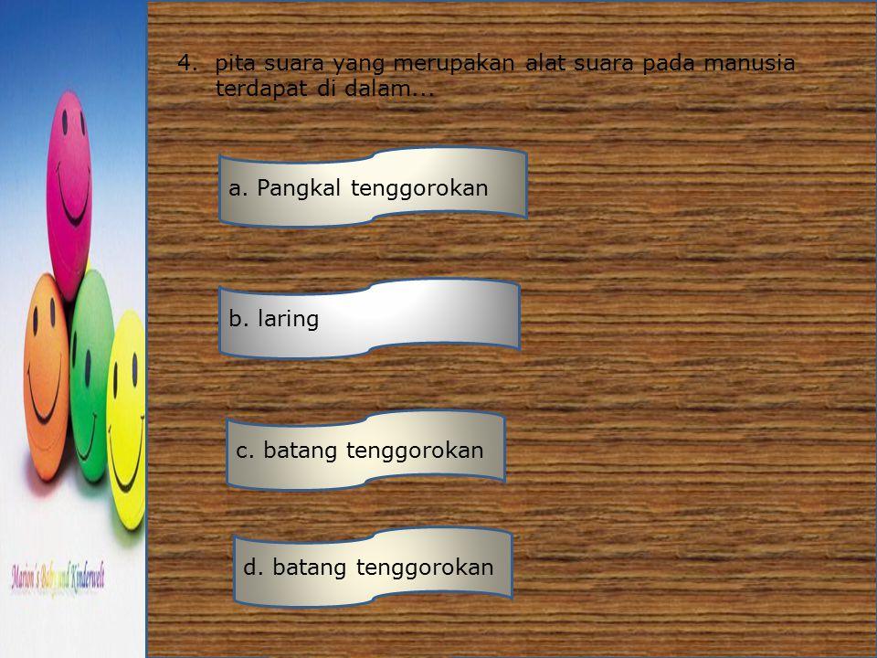 4. pita suara yang merupakan alat suara pada manusia