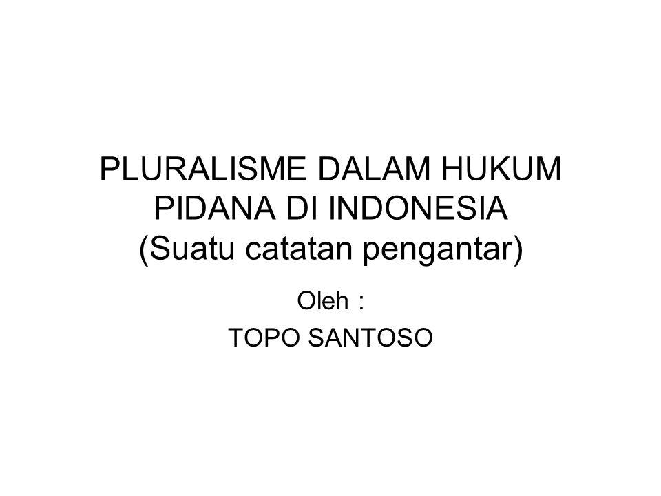 PLURALISME DALAM HUKUM PIDANA DI INDONESIA (Suatu catatan pengantar)