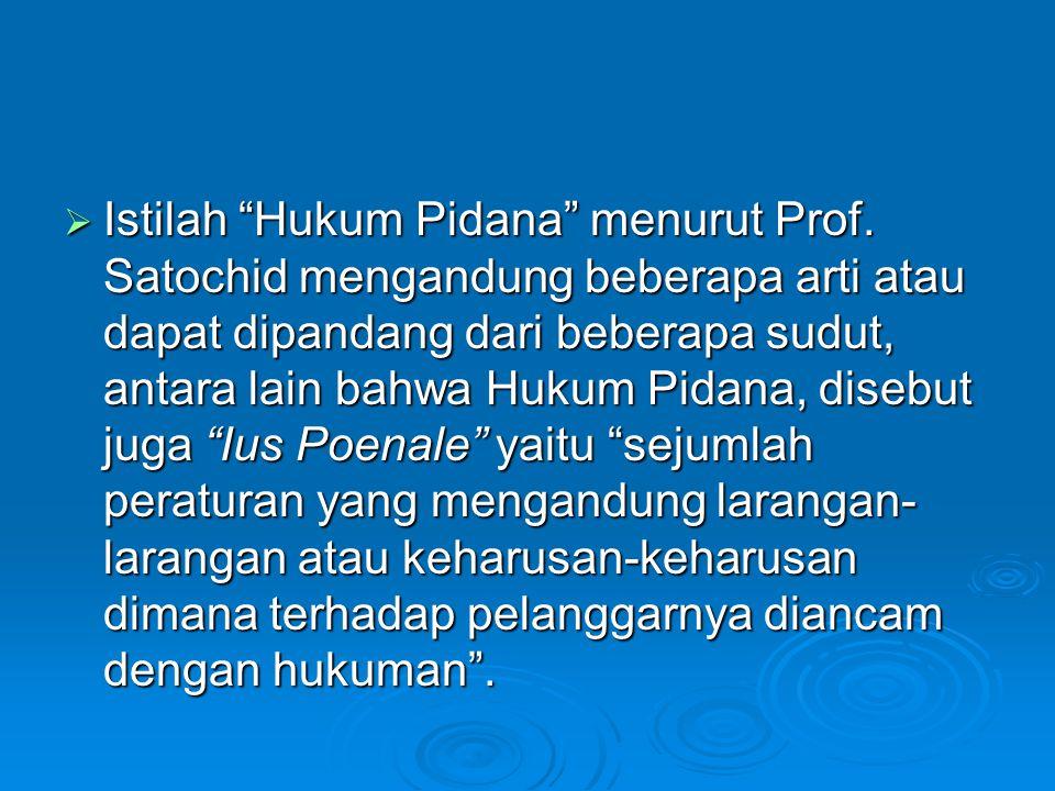 Istilah Hukum Pidana menurut Prof