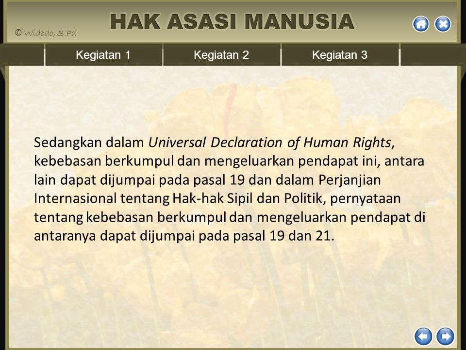 Sedangkan dalam Universal Declaration of Human Rights, kebebasan berkumpul dan mengeluarkan pendapat ini, antara lain dapat dijumpai pada pasal 19 dan dalam Perjanjian Internasional tentang Hak-hak Sipil dan Politik, pernyataan tentang kebebasan berkumpul dan mengeluarkan pendapat di antaranya dapat dijumpai pada pasal 19 dan 21.