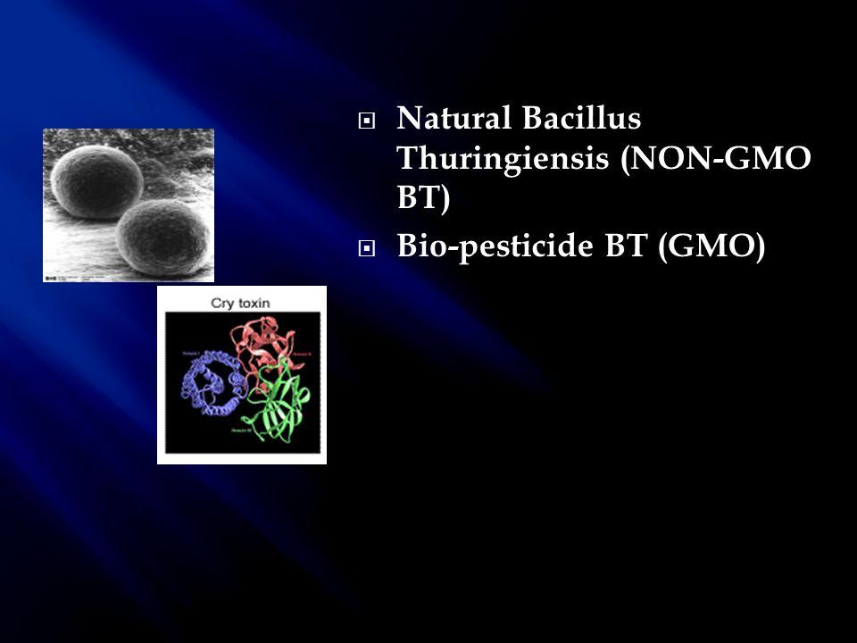 Natural Bacillus Thuringiensis (NON-GMO BT)
