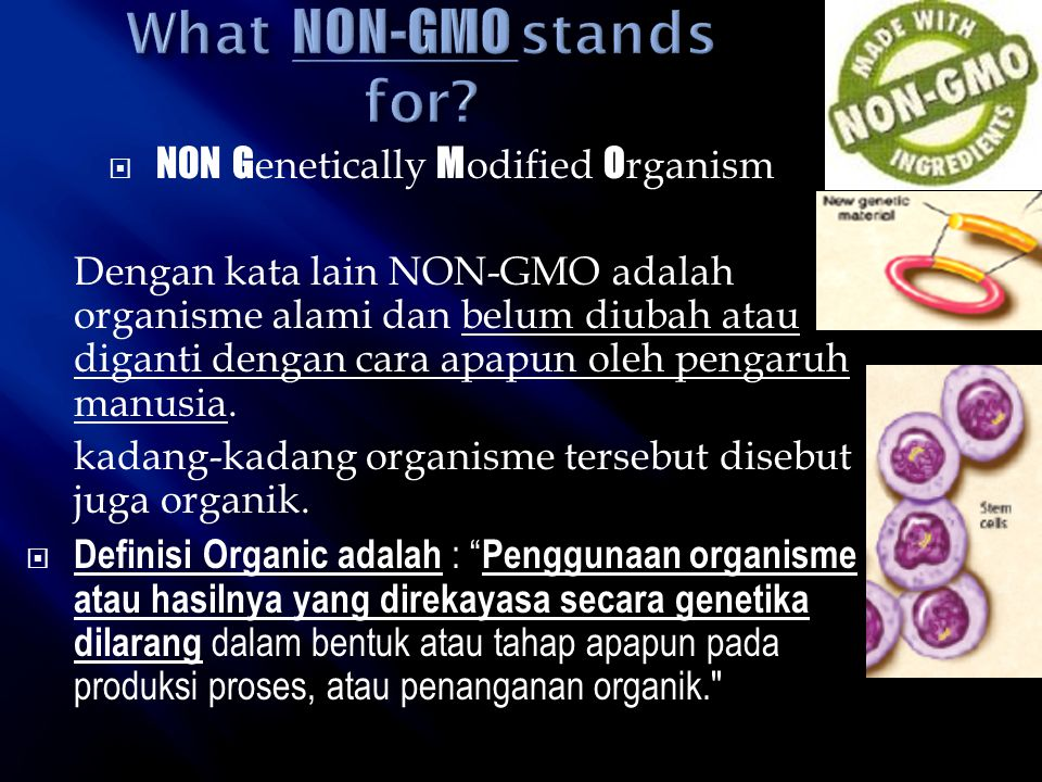 What NON-GMO stands for