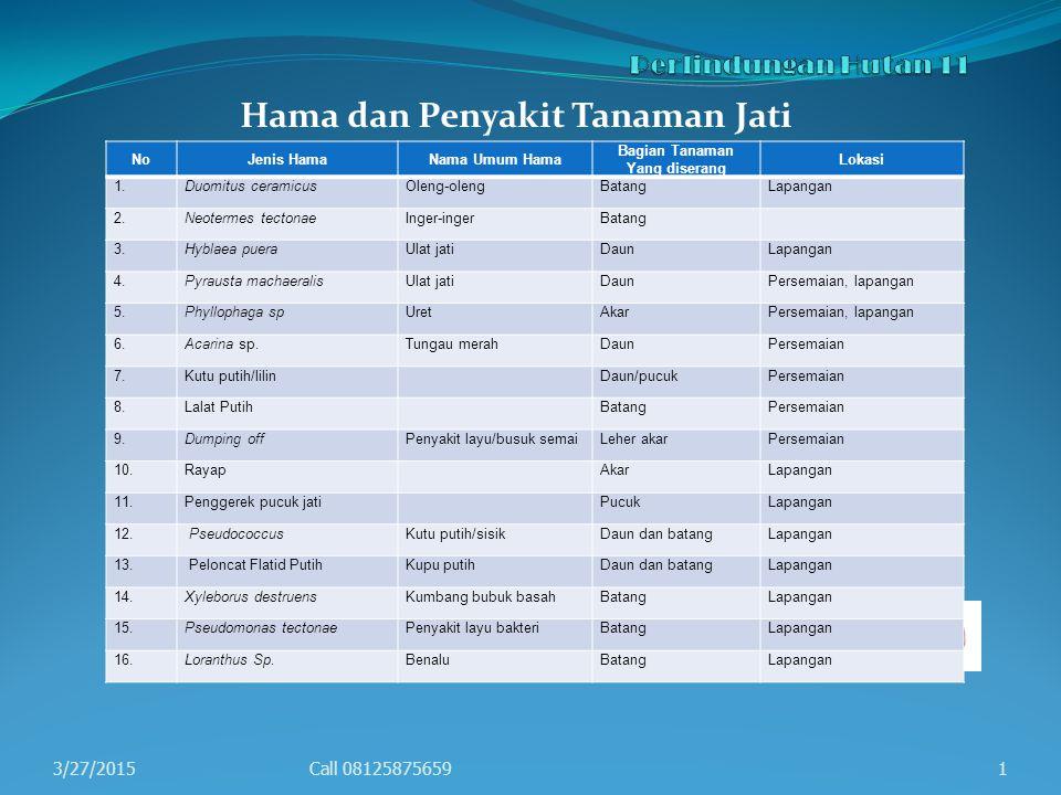 Hama dan Penyakit Tanaman Jati