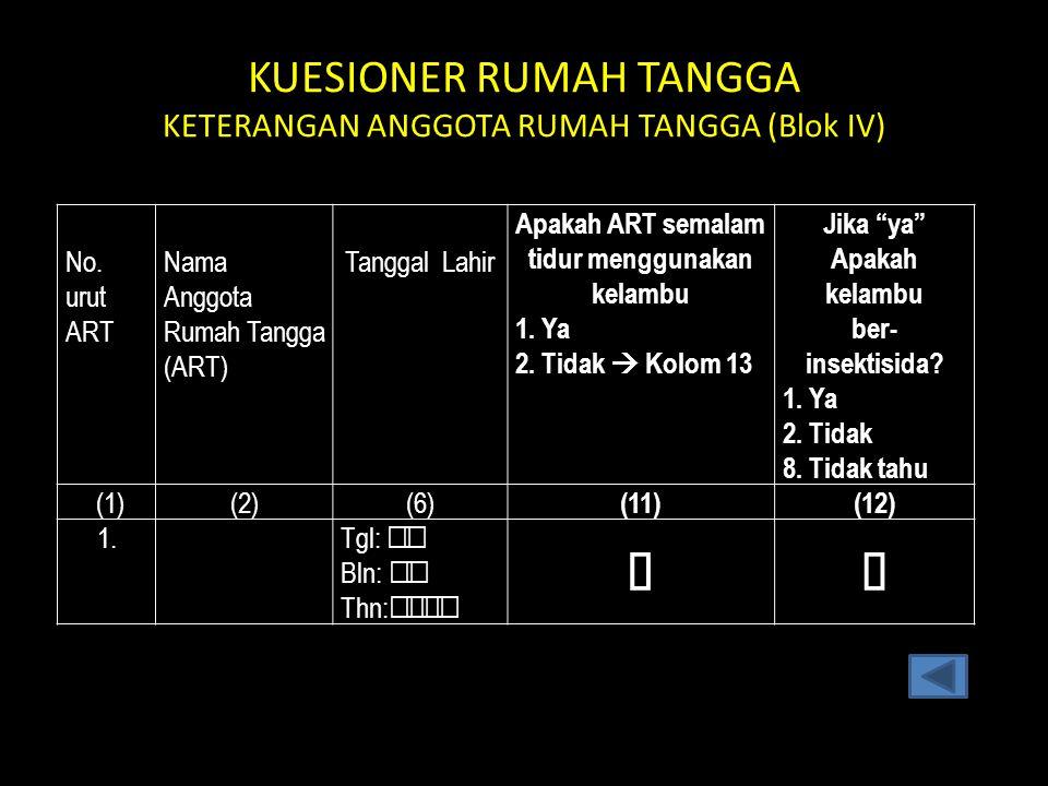 KUESIONER RUMAH TANGGA KETERANGAN ANGGOTA RUMAH TANGGA (Blok IV)