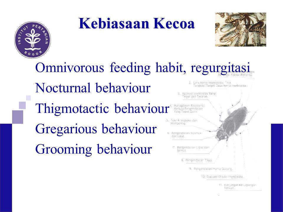 Kebiasaan Kecoa Omnivorous feeding habit, regurgitasi