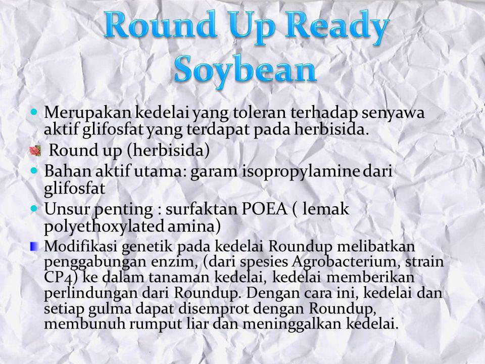 Round Up Ready Soybean Merupakan kedelai yang toleran terhadap senyawa aktif glifosfat yang terdapat pada herbisida.
