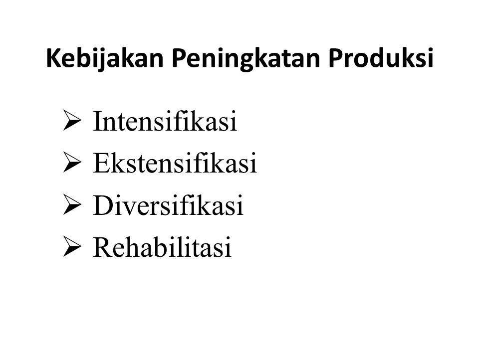 Kebijakan Peningkatan Produksi