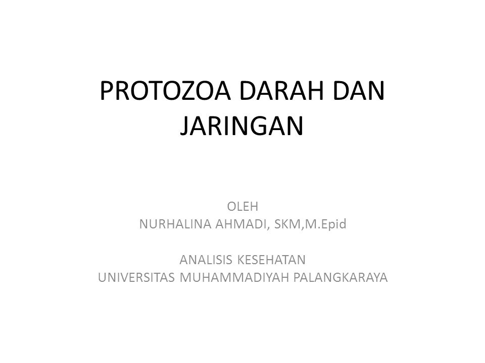 PROTOZOA DARAH DAN JARINGAN