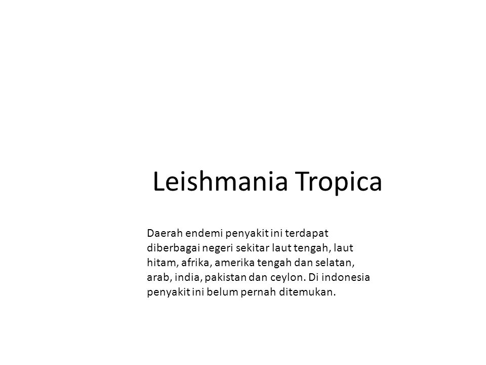 Leishmania Tropica