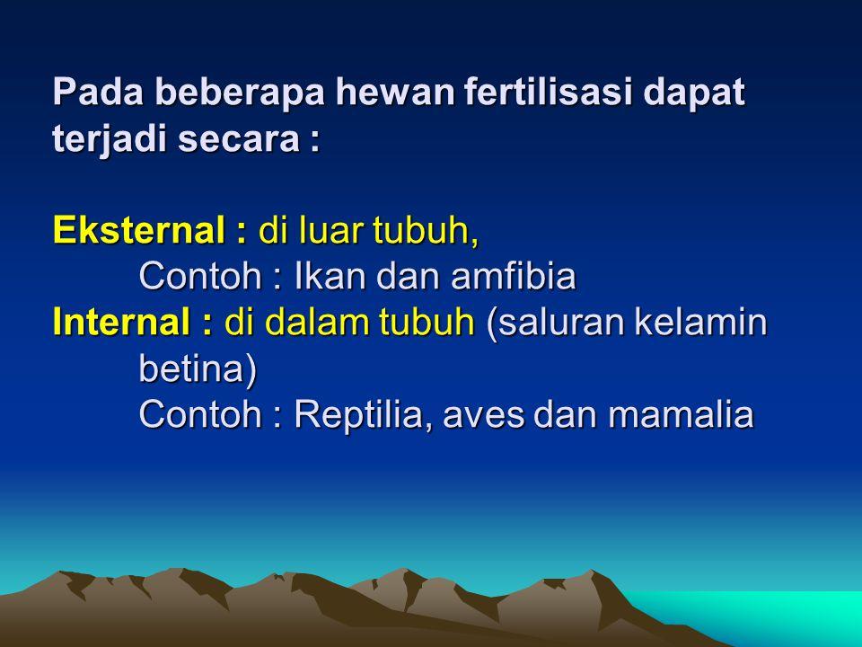Pada beberapa hewan fertilisasi dapat terjadi secara : Eksternal : di luar tubuh, Contoh : Ikan dan amfibia Internal : di dalam tubuh (saluran kelamin betina) Contoh : Reptilia, aves dan mamalia
