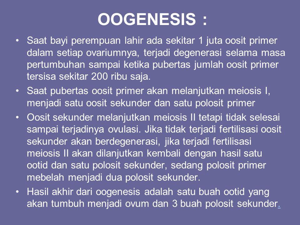 OOGENESIS :